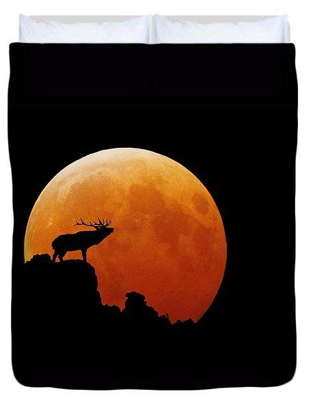 Bull Elk Duvet Cover by Stuart Harrison