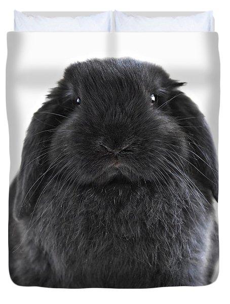 Bunny rabbit Duvet Cover by Elena Elisseeva