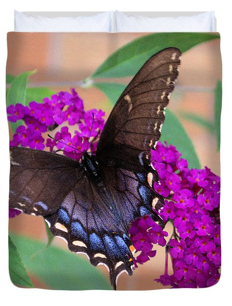 Butterfly And Friend Duvet Cover by Luther   Fine Art