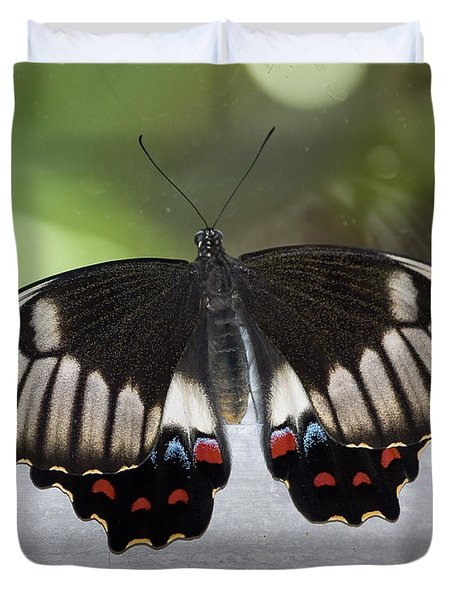 Butterfly Duvet Cover by Steven Ralser