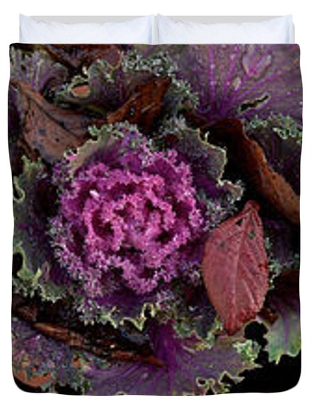 Cabbage With Butterfly Nebula Duvet Cover by Panoramic Images