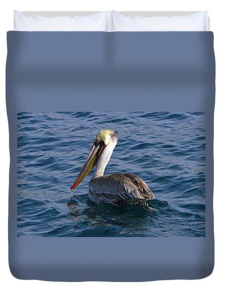 California Brown Pelican Duvet Cover by Shoal Hollingsworth