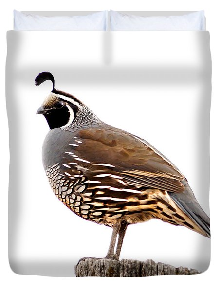 California Quail Duvet Cover by Robert Bales