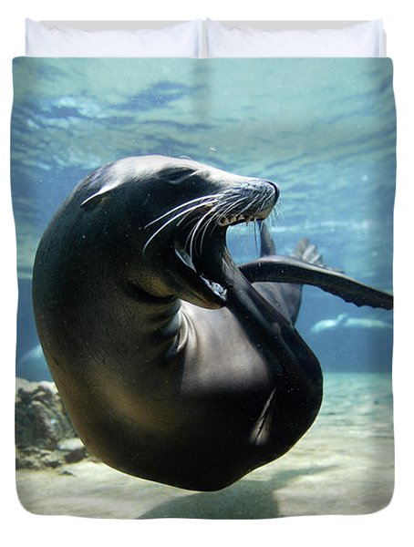 California Sea Lion Yawning Duvet Cover by Hiroya Minakuchi