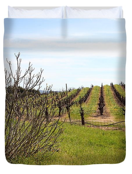 California Vineyards In Late Winter Just Before The Bloom 5d22121 Duvet Cover by Wingsdomain Art and Photography