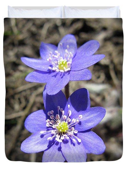 Calling Spring. Two Violets Duvet Cover by Ausra Paulauskaite