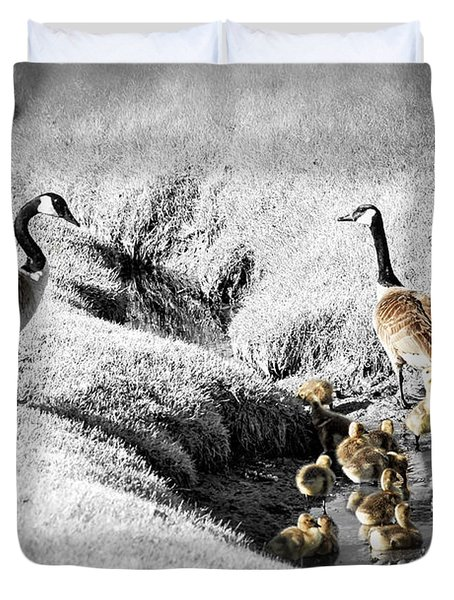 Canada geese family Duvet Cover by Elena Elisseeva