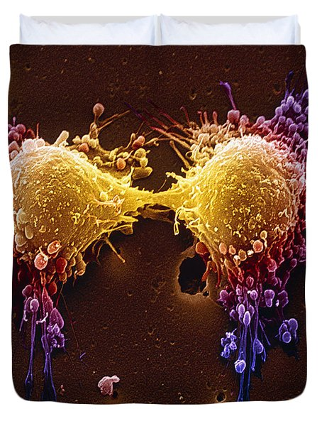 Cancer Cell Division Duvet Cover by SPL and Photo Researchers
