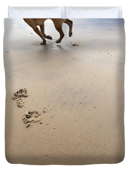 Canine Beach Jogging Duvet Cover by Eldad Carin