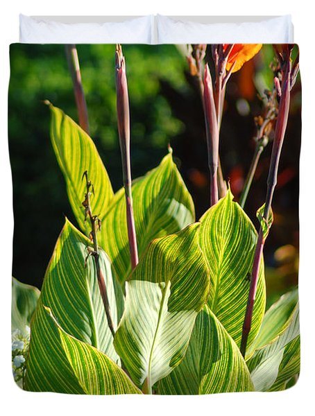 Canna Lily Duvet Cover by Optical Playground By MP Ray