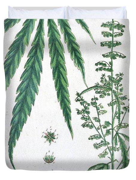 Cannabis Duvet Cover by Elizabeth Blackwell