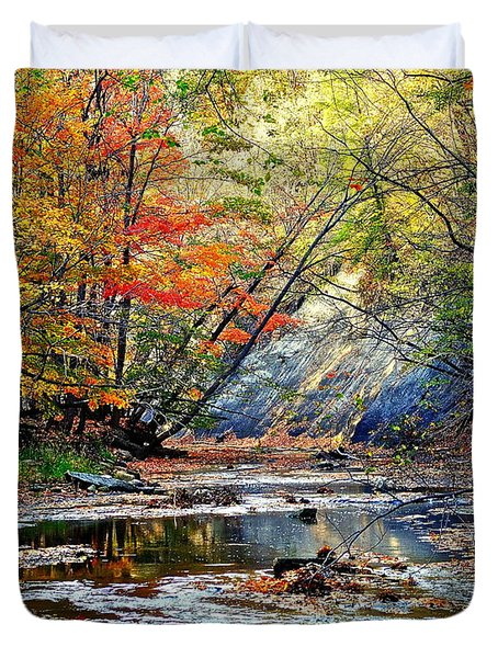 Canopy Of Color Iv Duvet Cover by Frozen in Time Fine Art Photography