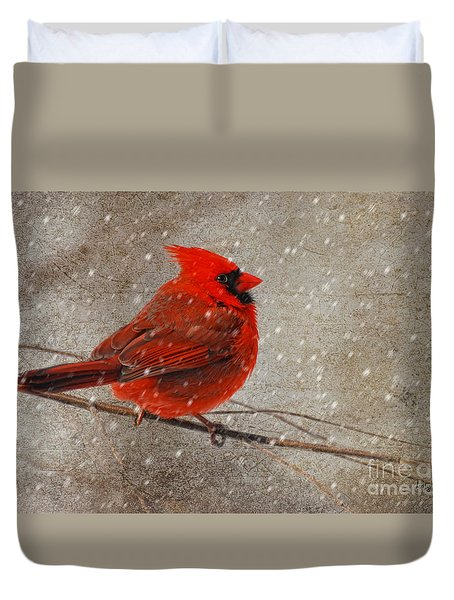 Cardinal in Snow Duvet Cover by Lois Bryan