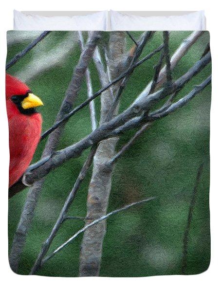 Cardinal West Duvet Cover by Jeff Kolker