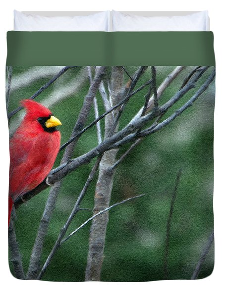 Cardinal West Duvet Cover by Jeff Kolker