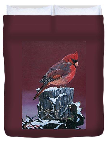 Cardinal Winter Songbird Duvet Cover by Sharon Duguay