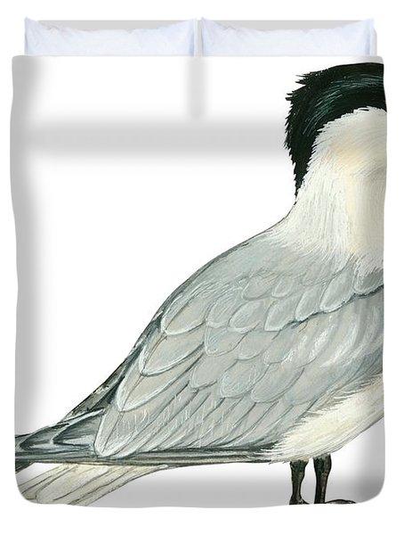 Caspian Tern Duvet Cover by Anonymous