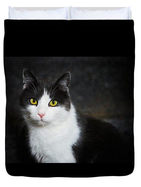 Cat Portrait With Texture Duvet Cover by Matthias Hauser