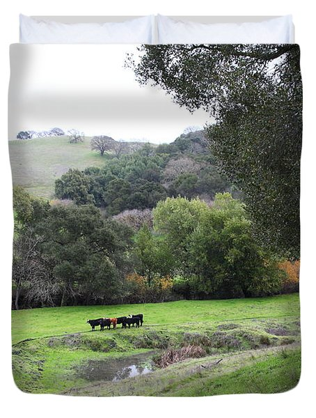 Cattles at Fernandez Ranch California - 5D21066 Duvet Cover by Wingsdomain Art and Photography