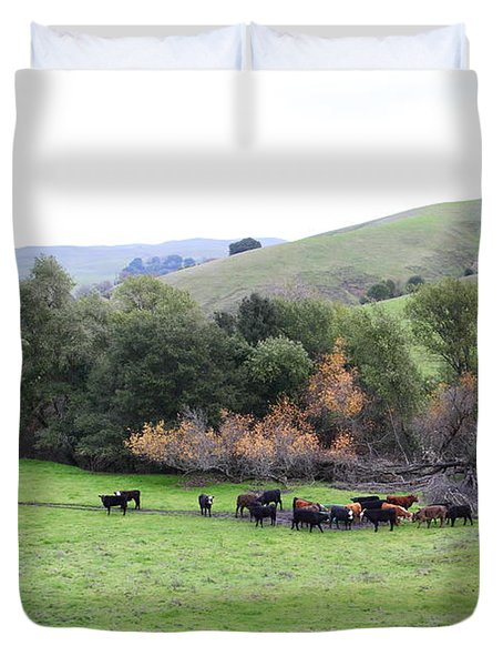 Cattles at Fernandez Ranch California - 5D21070 Duvet Cover by Wingsdomain Art and Photography