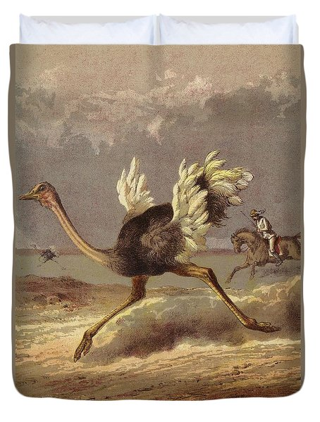 Chasing The Ostrich Duvet Cover by English School