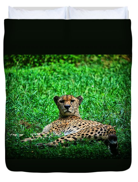 Cheetah Duvet Cover by Karol Livote