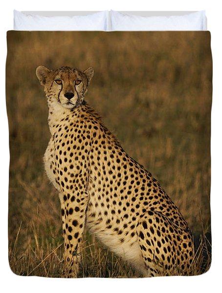 Cheetah On Savanna Masai Mara Kenya Duvet Cover by Hiroya Minakuchi