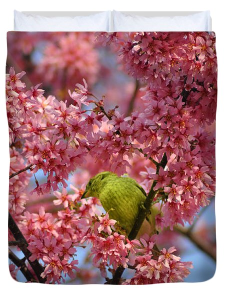 Cherry Blossom Time Duvet Cover by Bill Cannon