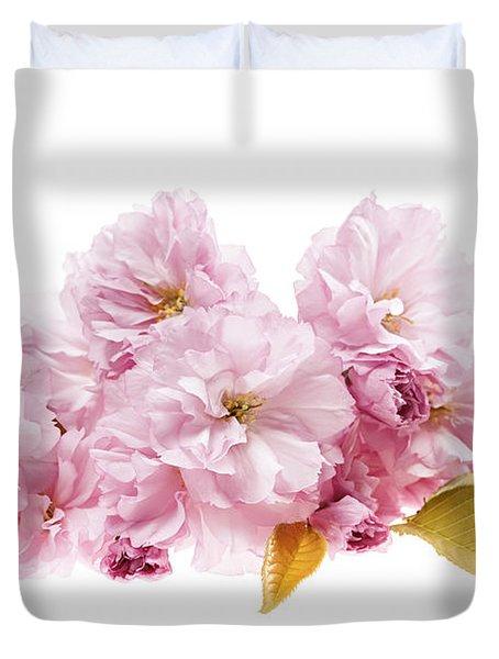 Cherry blossoms arrangement Duvet Cover by Elena Elisseeva
