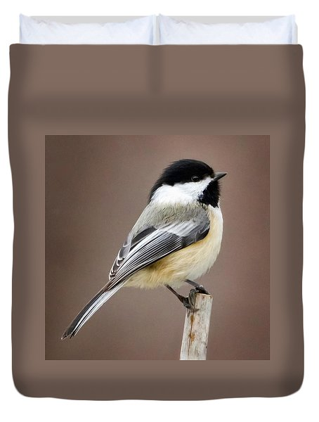 Chickadee Square Duvet Cover by Bill Wakeley