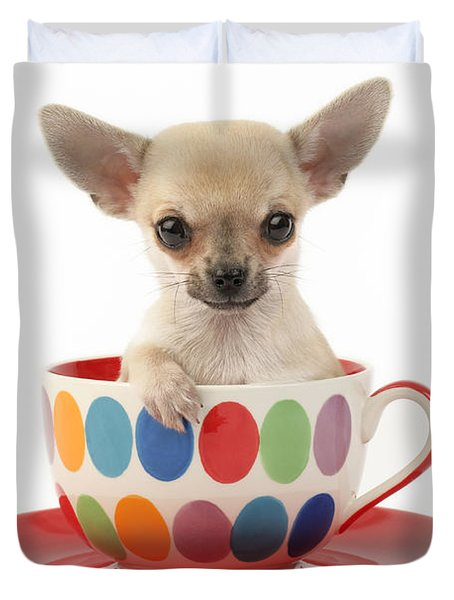 Chihuahua in Cup DP684 Duvet Cover by Greg Cuddiford