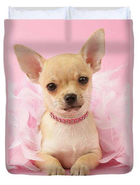 Chihuahua With Feather Boa Duvet Cover by Greg Cuddiford