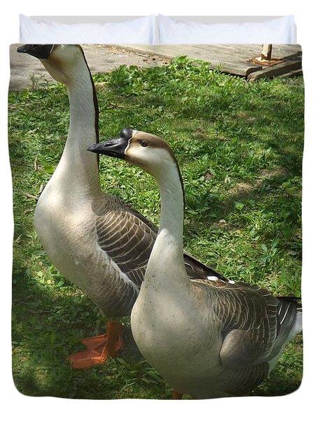 Chinese Swan Goose Pair 2 Duvet Cover by Sara  Raber
