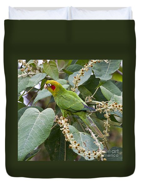 Chiriqui Conure 2 Duvet Cover by Heiko Koehrer-Wagner