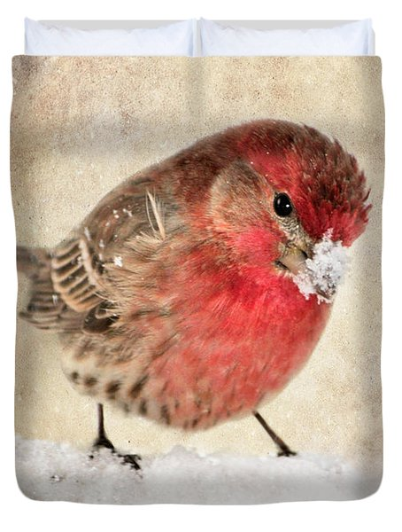 Christmas Card 9 Duvet Cover by Betty LaRue