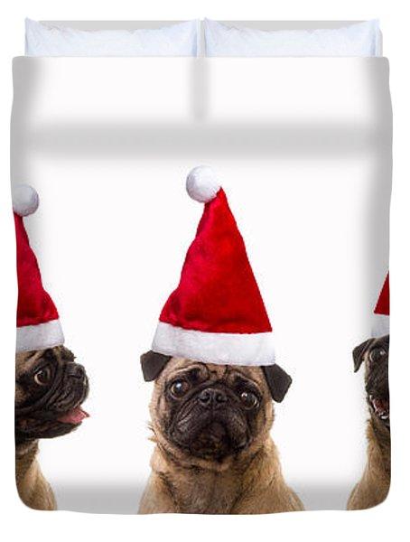 Christmas Caroling Dogs Duvet Cover by Edward Fielding
