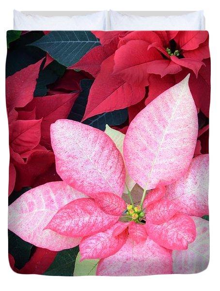 Christmas Pointsettia Duvet Cover by Kathleen Struckle
