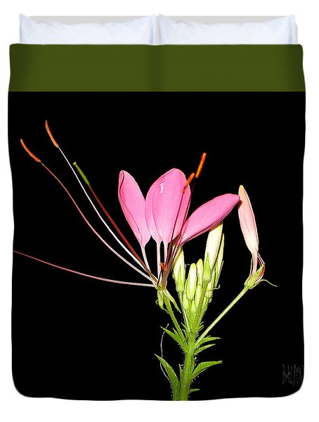 Cleome Duvet Cover by J R Baldini Master Photographer