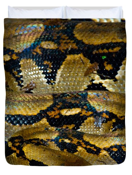 Close-up Of A Boa Constrictor, Arenal Duvet Cover by Panoramic Images