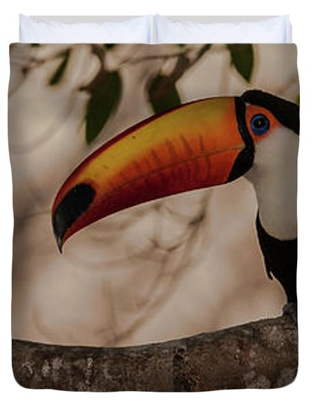 Close-up Of Tocu Toucan Ramphastos Toco Duvet Cover by Panoramic Images
