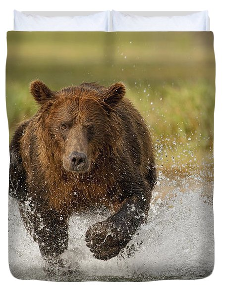Coastal Grizzly Boar Fishing Duvet Cover by Kent Fredriksson