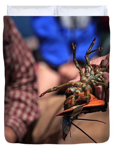 Coastal Maine Is Lobster Duvet Cover by Karol Livote