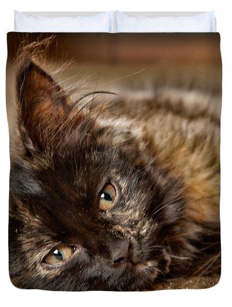 Coco Kitten Duvet Cover by Trever Miller