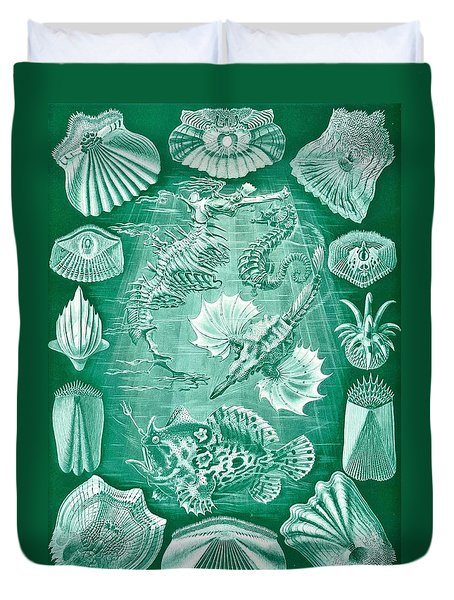 Collection Of Teleostei Duvet Cover by Ernst Haeckel