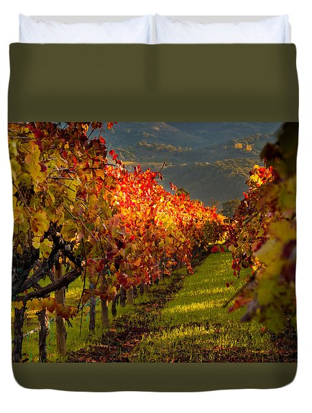 Color On The Vine Duvet Cover by Bill Gallagher