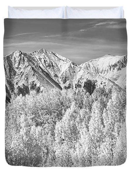 Colorado Rocky Mountain Autumn Beauty BW Duvet Cover by James BO  Insogna