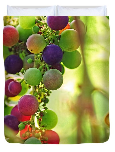 Colorful Grapes Duvet Cover by Peggy Collins