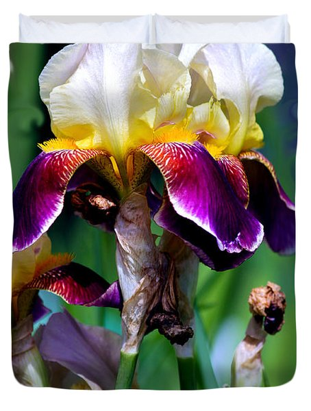 Colorful Iris Grandeur Duvet Cover by Karon Melillo DeVega