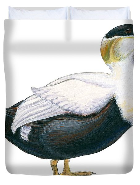 Common Eider Duvet Cover by Anonymous