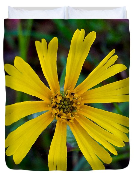 Common Madia In Park Sierra-ca Duvet Cover by Ruth Hager